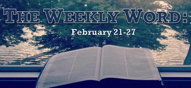 2016-Week 8