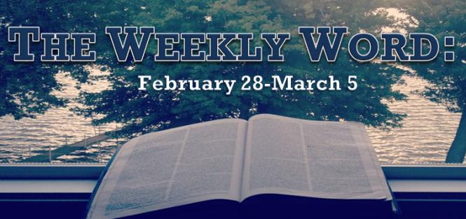 2016-Week 9